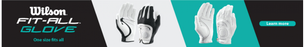 Wilson Fit All Gloves
